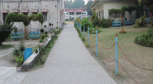 Dev Bhoomi Institute of Technology